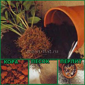 составление грунта для комнатных растений