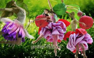 танцующие цветы фото