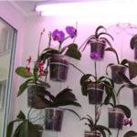 Подсветка для комнатных растений.