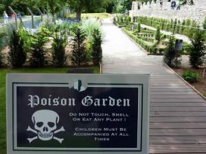 таблички в ядовитом саду